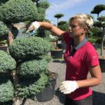 Víte, jaká je symbolika vody v japonských zahradách?